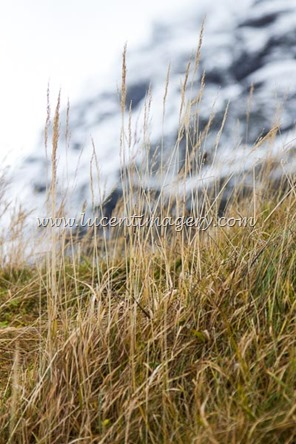 Iceland6-copyright-www.lucentimagery.com-9
